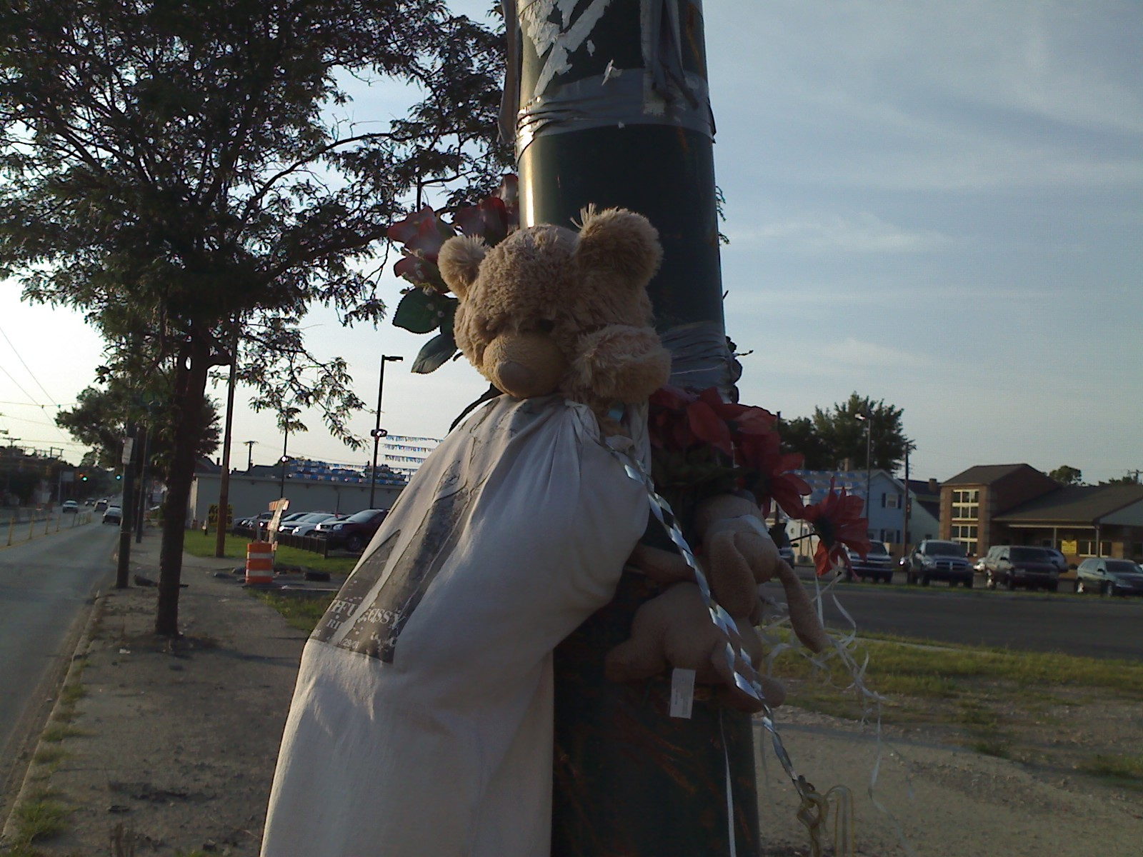 Memorial stuffed animals on North Main Street at Great Miami Boulevard on August 6, 2009